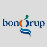 opinion logo bongrup