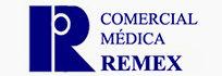 06 - logo remex