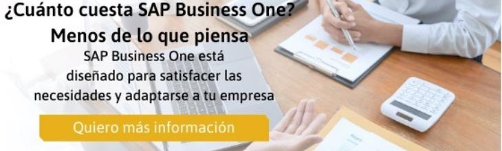 SAP Business One 1 lsisoluciones
